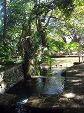 casela-nature-and-leisure-park-mauritius