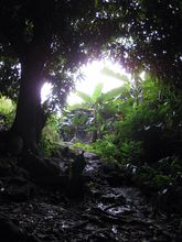 environment-rochester-falls-places-to-visit-mauritus