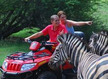 quad-and-zebra-casela-nature-and-leisure-park-mauritius