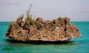 crystal rock- Mauritius- Sunset Cruiser