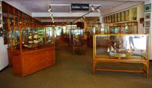 showroom-historic-marine