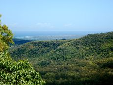 viewpoint-black-river-national-park-mauritius