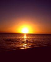 lapreneuse-beaches-mauritius