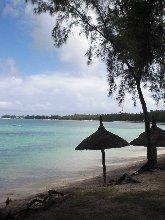 Mont Choisy Beach sun umbrellas