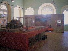 Mauritius-Museum-Natural-History-Museum