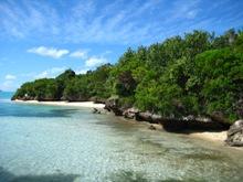 Île aux Aigrettes