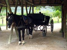 carriage-domaine-les-pailles-ausflugsziele-mauritius