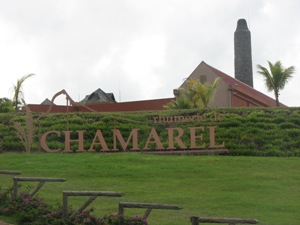 rhumerie-de-chamarel entrance