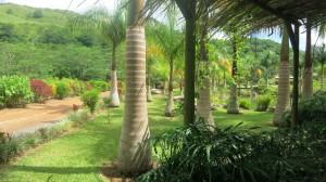 Zip Line Tours Mauritius